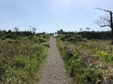 【2019.5.26】千葉・茨城の朝一は無風の胸肩サイズでめっちゃいい波