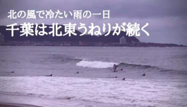 最高気温20度に届かず冷たい雨の一日、千葉は北東うねりが続く【2019.10.29】