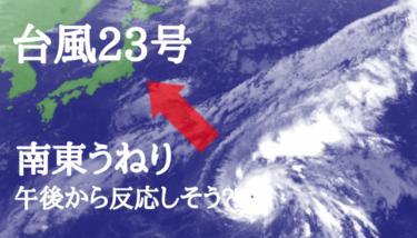 台風23号の南東うねりは午後から⁈明日は一日いい波が期待できそう!【2019.11.6】