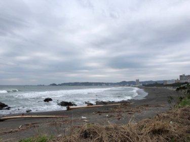 北東の風をかわすポイントで午前の干潮前後の潮が動く時間帯が良さそう【2019.11.10】