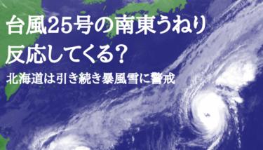 北海道は今日も暴風雪が続き警戒必要、台風25号のうねりが少し反応?【2019.11.16】