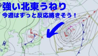 千葉は強いうねりをかわすポイントへ、今週はずっと北東うねりが続きそう !【2020.1.19】