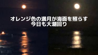 オレンジ色の満月が海面を照らす大潮回り【2020.6.8】