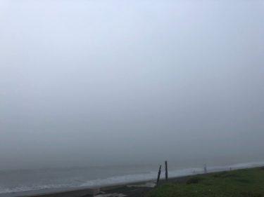 二十四節気「芒種」、濃霧に覆われた南房総エリア【2020.6.5】