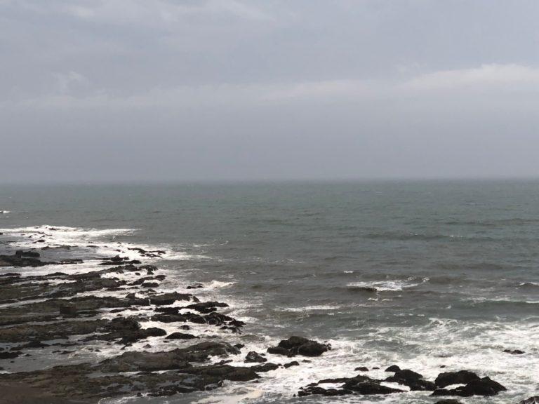 今日の波画像