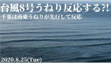 台風8号南西うねりは西日本で反応してきそう、千葉は南東うねりが先行して反応【2020.8.25】