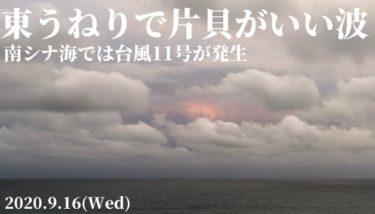片貝周辺は東うねりが残って今朝もいい波、台風11号が南シナ海で発生【2020.9.16】