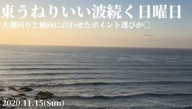 東うねりでいい波続く日曜日、大潮回りと風向に合わせたポイント選びが〇【2020.11.15】