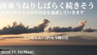 高気圧が次々と日本付近を通過、南東うねりがしばらく続きそう【2020.11.16】