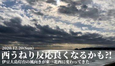 伊豆大島灯台の風向きが変わり西うねりの反応が良くなるかも⁈【2020.12.20】