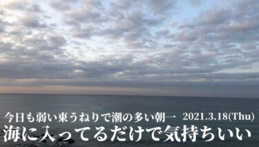 弱い東うねりで潮の多い朝一~海に入ってるだけで気持ちいい【2021.3.18】