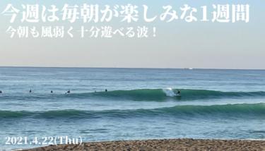 今週は毎朝が楽しみな1週間〜今朝も風弱く十分遊べる波【2021.4.22】