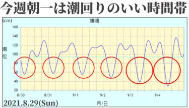 気圧の谷による北東の風と弱い東うねり、朝一は潮回りのいい時間帯になってきた【2021.8.29】